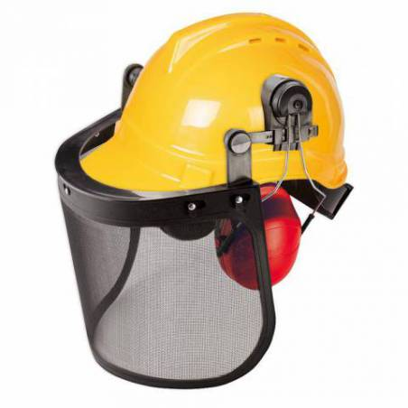 Casque de forestier